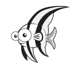 Level 4 Angelfish | Small Fish Big Fish Swim School