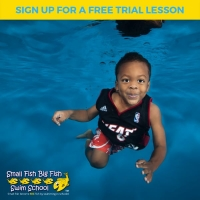 SWIMMING LESSONS IN DUNES ROAD FLORIDA